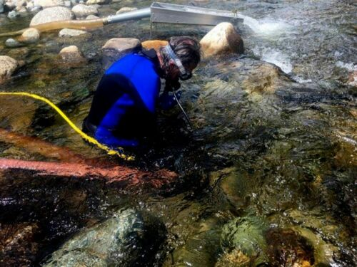Pure Alaska Native Placer Gold Nuggets dredge sluice fines specimen prospector