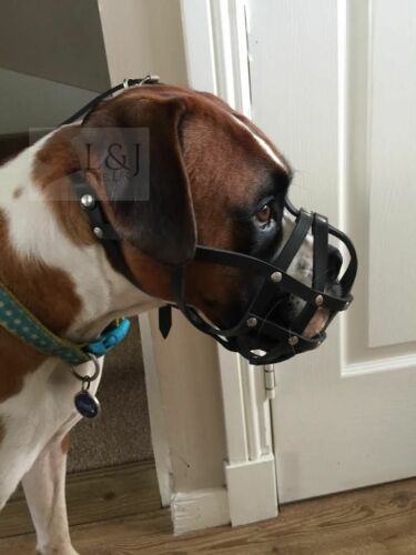 Light leather Dog Muzzle for Boxer and Other dogs with short snout