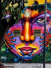ART PRINT POSTER PHOTO GRAFFITI MURAL STREET PSYCHEDELIA SKULL NOFL0302
