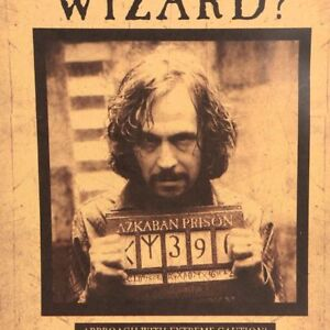 Harry-Potter-Poster-avez-vous-vu-cet-Assistant-Wall-Sticker-Home-Decor-Placard