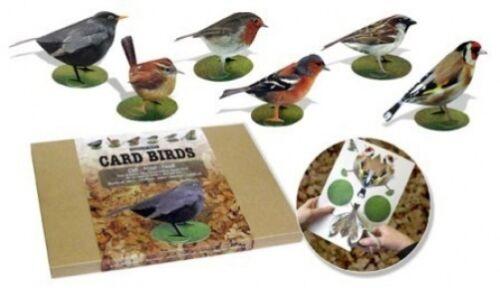 Three Dimensional Card Birds Flights of Fancy Card Garden Birds