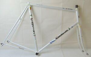 Vintage-Tommasini-Super-Prestige-Frame-60-58cm-Columbus-SPX-Tommasini-Air-Forks