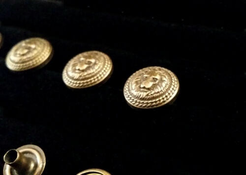 Antique Brass Lion Head Snaps Set of 10 Leather Costume SCA Armor LARP Cosplay