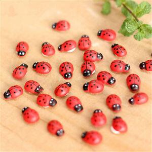 100pc-Lady-Bug-Bugs-Terrarium-Miniature-House-Flower-Figurine-Craft-Ornaments