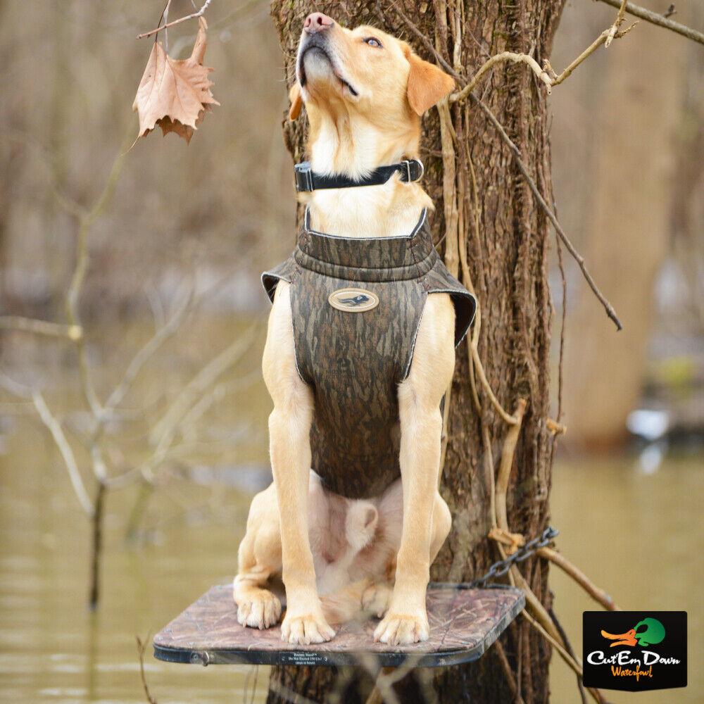 Avery Standard Dog Vest Neoprene