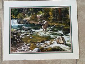 Jack Sorenson Deer Stag Wild Life Vintage Scafa Tornabene Lithograph Print 20x16