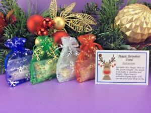 MAGIC REINDEER FOOD AND SANTA KEY BUNDLE CHRISTMAS EVE TRADITION