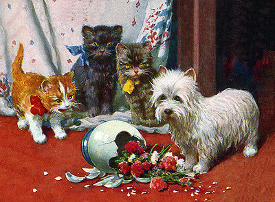 WEST HIGHLAND WHITE TERRIER WESTIE DOG GREETINGS NOTE CARD CATS /& BROKEN VASE