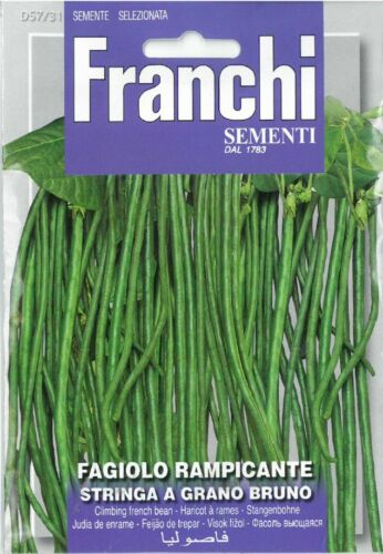 Franchi Seeds Climbing French Bean Stringa a Grano Bruno seed