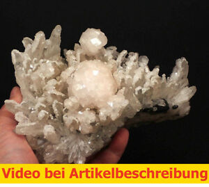 6726-classic-Calcite-UV-Quarz-Sphalerite-Calcit-8-14-19cm-Trepca-Kosovo-MOVIE