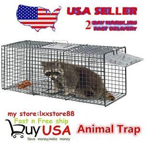 Humane-Animal-Trap-32x12x12-Steel-Cage-Live-Rodent-Control-Skunk-Opossum-HC