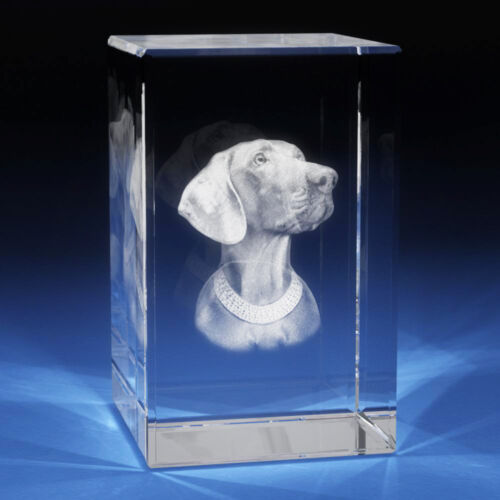 3D Laser Crystal Glass Etched Engrave Paperweight Stand Dog Animals Portrait S
