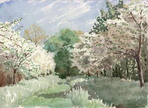 FOREST-LANDSCAPE-Watercolour-Painting-c1952-LETTICE-CHOLMONDELEY
