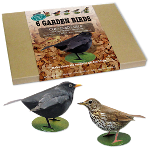 Details about GARDEN BIRDS SET - 6 birds FLIGHTS OF FANCY nature card  modelling crafts NEW