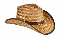 Men's Women's Stained Brown Woven Straw Cowboy Hat Free Shipping