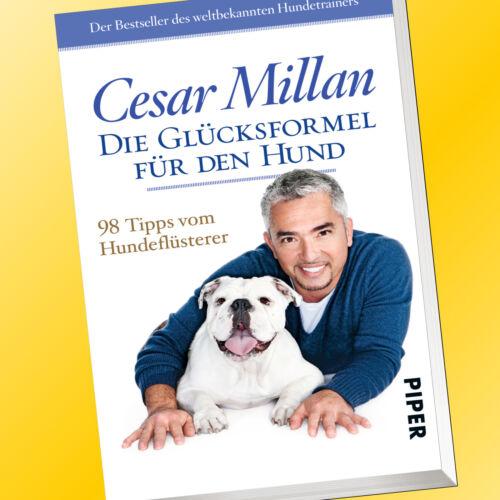 Buch CESAR MILLANDIE GLÜCKSFORMEL FÜR DEN HUND98 Tipps vom Hundeflüsterer