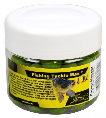 FTM Amino Flash Virus Pop Up 16mm Muschel 7201516 Pop Ups TOP//NEU