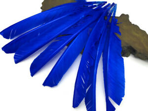 6 Pieces RED Turkey Pointers Primary Wing Quill Large Feathers