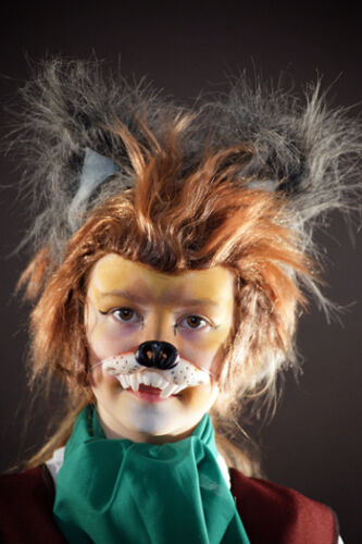 World Book Day-Animal-Wolf-FOX Wig-Ears-Nose Kids Fox Fancy Dress Costume Set