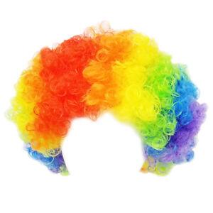 Economy Rainbow Clown Wig ~ FUN HALLOWEEN CURLY CLOWN AFRO COSTUME ... 8870c9401
