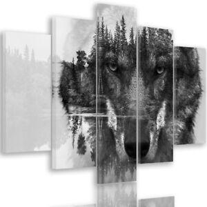 bild leinwand bilder wolf schwarz wei xxl fertig. Black Bedroom Furniture Sets. Home Design Ideas