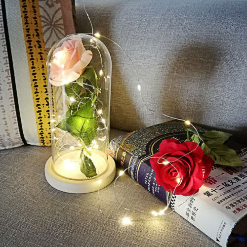 Enchanted Forever Rose Flower In Glass Dome LED Light Valentine/'s Day Girls Gift