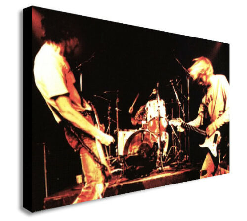 NIRVANA GRUNGE ROCK BAND LIVE  Canvas Wall Art Framed Print Various Sizes