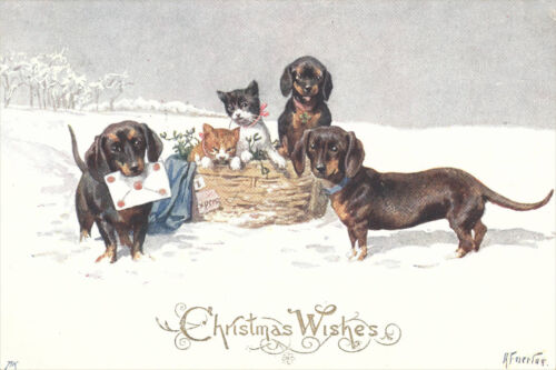 Feiertag 1911 Dachshund Dogs /& Kittens K LARGE New Blank Christmas Note Cards
