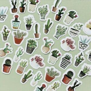 45-Pezzi-Cactus-Mini-Carta-Adesivi-Decorazione-Fai-da-Te-Album-Diario