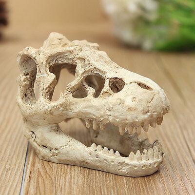 Aquarium Fish Tank Terrarium Decoration Crocodile Skull Resin Ornament Decor