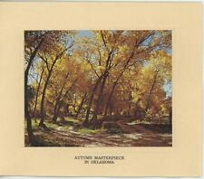 VINTAGE AUTUMN SEASON FOLIAGE OKLAHOMA TREES US BLANK NOTE CARD PHOTO ART PRINT
