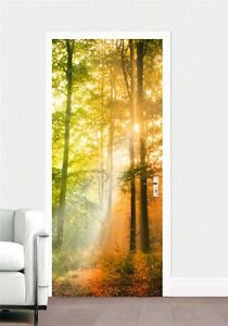t r fototapete herbst wald baum natur sonne t r tapete t r poster bild tapete ebay. Black Bedroom Furniture Sets. Home Design Ideas
