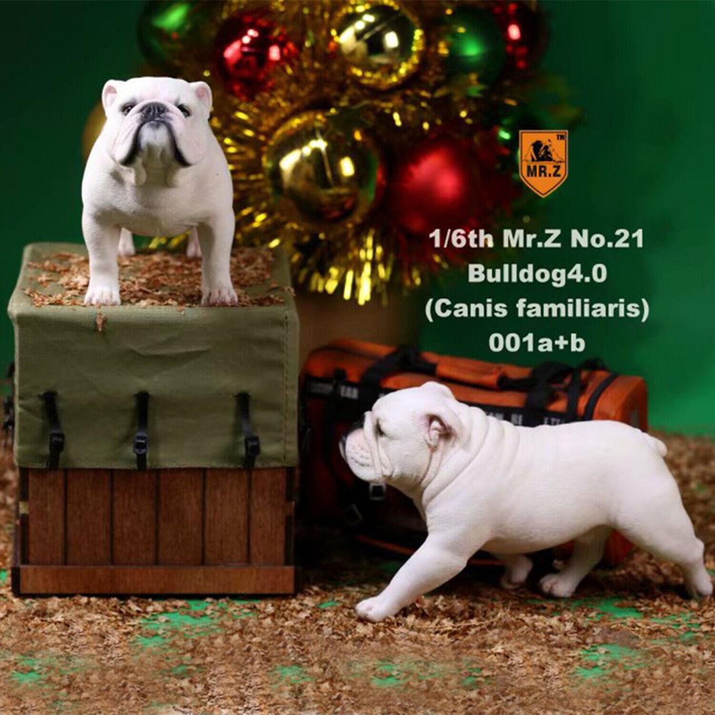 2Pcs  Set Mr.Z 1  6th British Bulldog djur modelllllerler Figur samlaor leksak Decor Gift