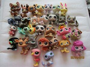 Petshop Lot De 30 Figurines Diverses .... Avec Defauts / 9