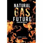 Natural Gas Future: A World Without Oil by Richard L Itteilag (Paperback / softback, 2012)