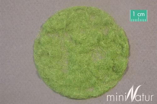 miniNatur Gras Flock 2mm Frühling 50gr 002-21  Preis//100gr 11,60 € Nr