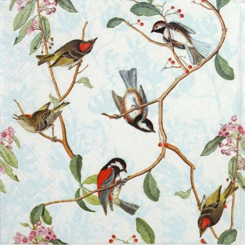 4x Paper Napkins for Decoupage Decopatch Craft Birdsong