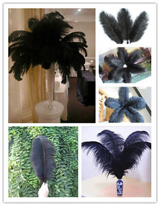 Pretty-10-50-100-200-pcs-black-ostrich-feathers-6-24inch-15-60cm-Free-shipping