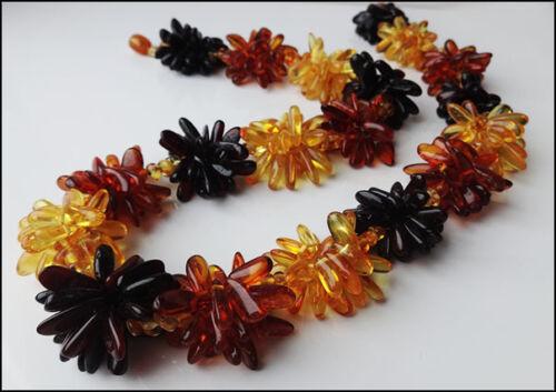 Color Baltic Amber Necklace Natural Elegance Multi