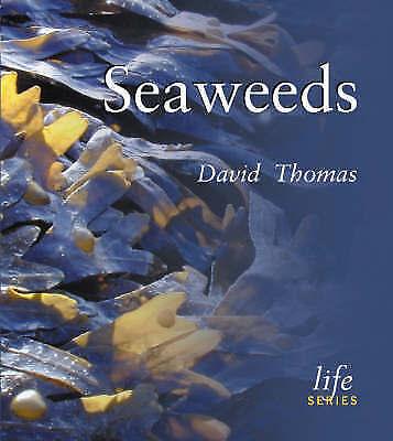 (Good)-Seaweeds (Life Series) (Paperback)-Thomas, David N.-0565091751