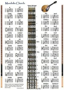 mandolin chords chart note locator fretboard small. Black Bedroom Furniture Sets. Home Design Ideas