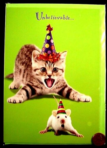 Birthday Kitten Cat Mouse Mice Unbelieveable Birthday Greeting Card NEW