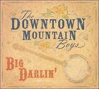 Big Darlin' by The Downtown Mountain Boys (CD, 2007, The Downtown Mountain Boys)