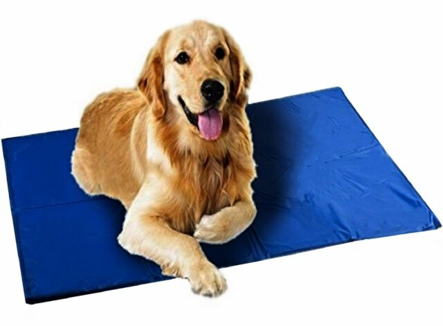 2 Pack Extra Large Xl Cooling Mat Cold Gel Pad Keep Dogs Cat Pets Cool Bed Mats