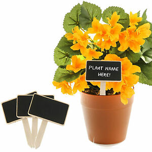 Mini-Wooden-Herb-Plant-Pot-Blackboard-Garden-Kitchen-Seed-Flower-Labels-Tags-NEW