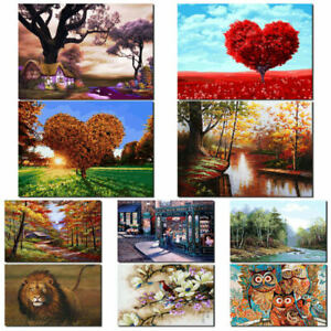 25-Types-DIY-Paint-By-Number-Kit-Digital-Oil-Painting-Art-Wall-Home-Room