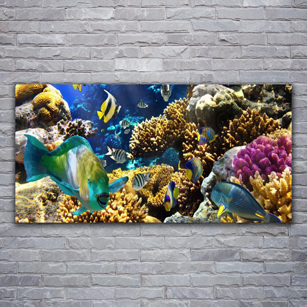 Glasbilder Wandbild Druck auf Glas 120x60 Korallenriff Natur