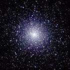 cosmoskty