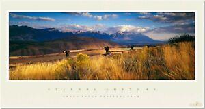 Drinker Durrance WY Grand Teton Natl.Prk Eternal Rhythms; Spirit Dance Meadow
