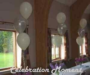 100 party balloon cluster arch decoration kit many colours image is loading 100 party balloon cluster amp arch decoration kit junglespirit Gallery